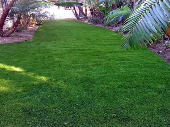 Artificial Grass Photos: Grass Carpet Columbiaville, Michigan City Landscape, Backyard Landscape Ideas