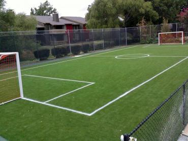 Artificial Grass Photos: Grass Carpet Gaines, Michigan High School Sports, Commercial Landscape