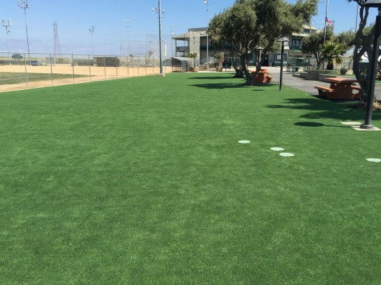 Artificial Grass Photos: Grass Carpet Port Austin, Michigan City Landscape, Recreational Areas