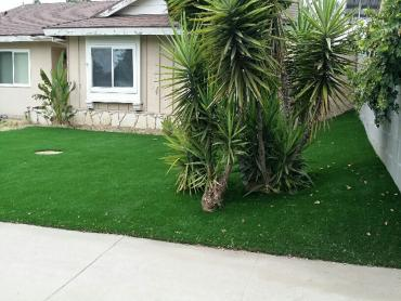 Grass Carpet Wyoming, Michigan Rooftop, Front Yard artificial grass