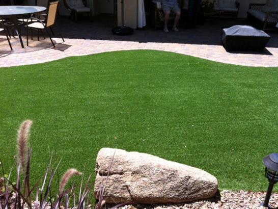 Artificial Grass Photos: Grass Installation McBain, Michigan Dog Parks, Backyard Makeover