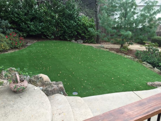 Artificial Grass Photos: Grass Turf Camden, Michigan Roof Top, Backyard Garden Ideas