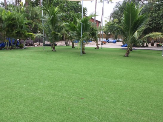 Artificial Grass Photos: Grass Turf Sanford, Michigan Roof Top, Commercial Landscape