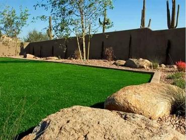 Artificial Grass Photos: Green Lawn Breedsville, Michigan Roof Top, Backyard Landscape Ideas
