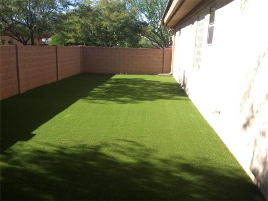 Artificial Grass Photos: Green Lawn Lake Michigan Beach, Michigan Paver Patio, Backyard Garden Ideas