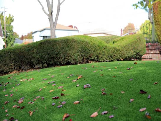 Artificial Grass Photos: How To Install Artificial Grass Britton, Michigan Gardeners, Front Yard Landscaping