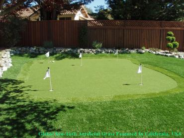 Artificial Grass Photos: How To Install Artificial Grass Lincoln Park, Michigan Putting Green Grass, Backyard Landscape Ideas