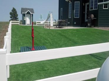 Artificial Grass Photos: Installing Artificial Grass Portland, Michigan Roof Top, Front Yard