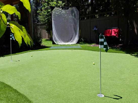 Artificial Grass Photos: Lawn Services Muskegon, Michigan Landscape Ideas, Backyard Designs
