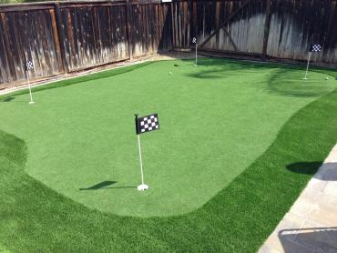 Artificial Grass Photos: Outdoor Carpet Belleville, Michigan Putting Green, Backyard Landscaping Ideas