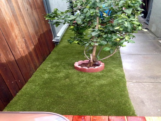 Outdoor Carpet Deckerville, Michigan Artificial Grass For Dogs, Backyards artificial grass