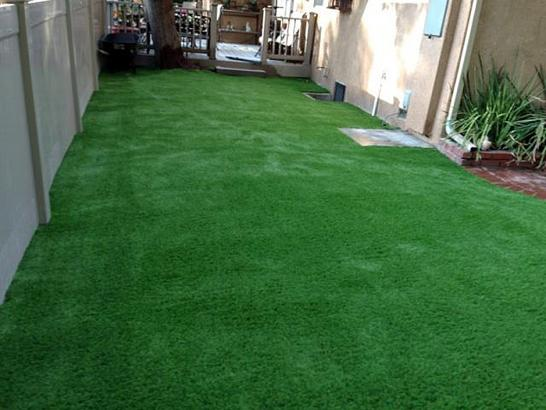 Artificial Grass Photos: Outdoor Carpet Petersburg, Michigan Lawn And Landscape, Backyard Designs
