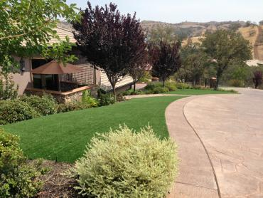 Artificial Grass Photos: Outdoor Carpet Williamston, Michigan Lawn And Landscape, Small Front Yard Landscaping