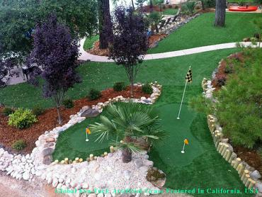 Artificial Grass Photos: Plastic Grass Detroit, Michigan Putting Green Turf, Beautiful Backyards
