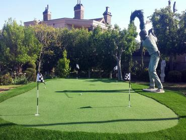Artificial Grass Photos: Synthetic Grass Cost Lake Isabella, Michigan Indoor Putting Green, Backyard Designs
