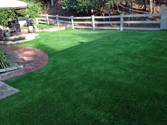 Artificial Grass Photos: Synthetic Grass Dexter, Michigan Pet Grass, Backyard