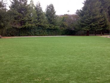 Artificial Grass Photos: Synthetic Grass Kalamazoo, Michigan Gardeners, Recreational Areas