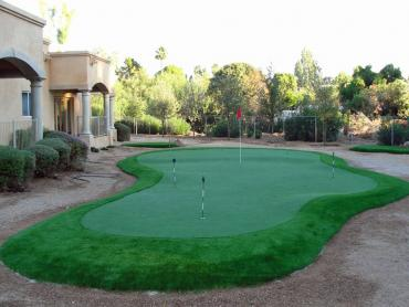 Artificial Grass Photos: Synthetic Grass Montgomery, Michigan Landscape Design, Backyard Garden Ideas