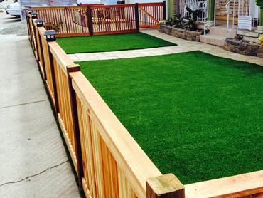 Artificial Grass Photos: Synthetic Grass Portage, Michigan Backyard Deck Ideas, Front Yard Ideas