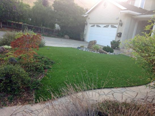 Artificial Grass Photos: Synthetic Lawn Auburn Hills, Michigan Roof Top, Front Yard Landscaping Ideas