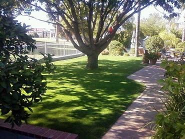 Artificial Grass Photos: Synthetic Lawn Bay Port, Michigan Gardeners