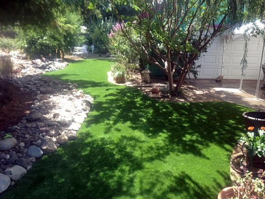 Artificial Grass Photos: Synthetic Lawn Garden City, Michigan Landscape Photos, Backyard
