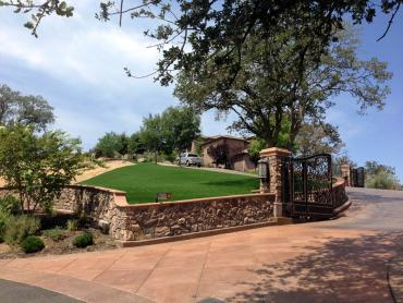 Artificial Grass Photos: Synthetic Turf Hartford, Michigan Lawn And Garden, Front Yard Landscaping