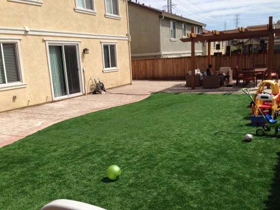 Artificial Grass Photos: Synthetic Turf Hastings, Michigan Indoor Playground, Small Backyard Ideas