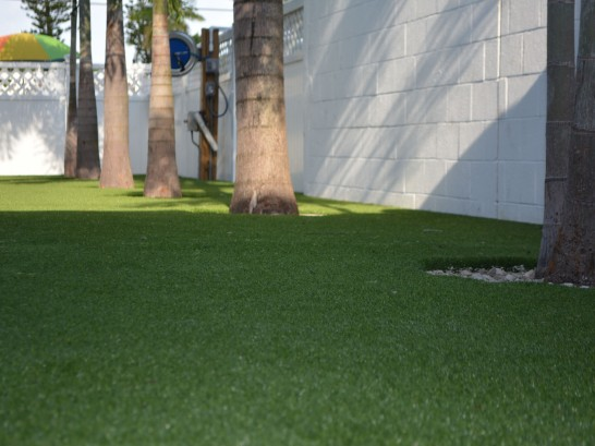 Artificial Grass Photos: Synthetic Turf Muir, Michigan Garden Ideas, Commercial Landscape