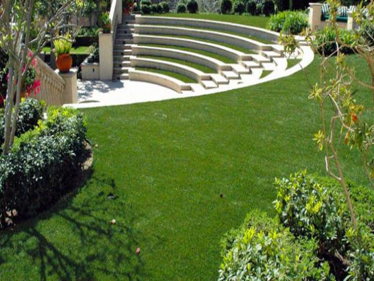 Artificial Grass Photos: Synthetic Turf Pontiac, Michigan Gardeners