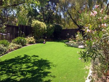 Artificial Grass Photos: Synthetic Turf South Monroe, Michigan Design Ideas, Backyard Designs