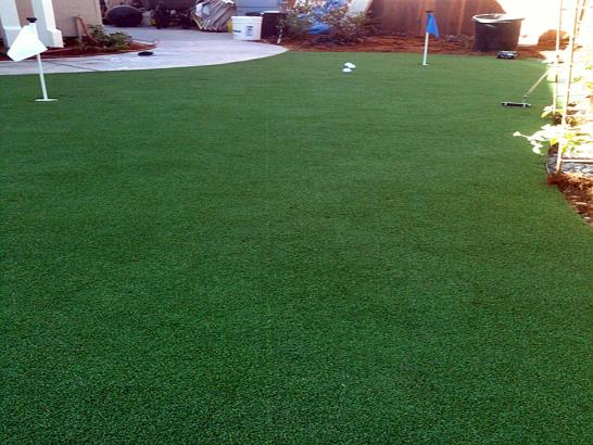 Artificial Grass Photos: Synthetic Turf Supplier Flat Rock, Michigan Backyard Putting Green, Backyard Ideas
