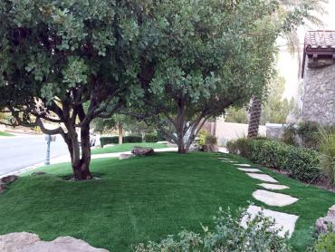 Artificial Grass Photos: Synthetic Turf Supplier Grand Ledge, Michigan Lawn And Landscape, Pavers