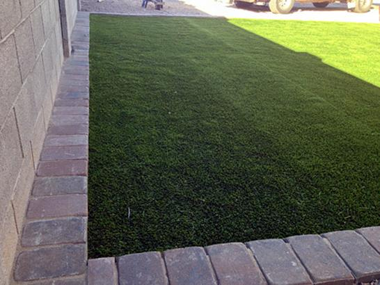 Artificial Grass Photos: Turf Grass Applegate, Michigan Design Ideas, Small Front Yard Landscaping