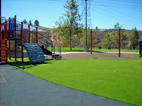 Artificial Grass Photos: Turf Grass Milford, Michigan Indoor Playground, Recreational Areas