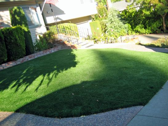Artificial Grass Photos: Turf Grass Norton Shores, Michigan Backyard Playground, Front Yard