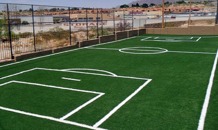 Sports Fields Synthetic Grass in Detroit and Detroit area